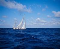 Sailboat in the Bahamas Fine-Art Print