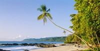 Montezuma Beach, Nicoya Peninsula, Costa Rica Fine-Art Print