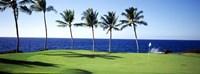 Golf Course, Big Island HI Fine-Art Print