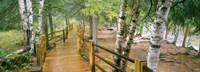 Gooseberry River, Gooseberry Falls State Park, Minnesota Fine-Art Print