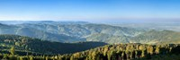 Hornisgrinde Mountain, Black Forest, Baden-Wurttemberg, Germany Fine-Art Print