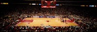 NBA Finals Bulls vs Suns, Chicago Stadium Fine-Art Print