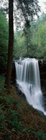 Dry Falls, Nantahala National Forest, Macon County, North Carolina Fine-Art Print