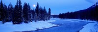 Moon Rising Above The Forest, Banff National Park, Alberta, Canada Fine-Art Print