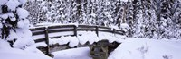 Snowy Bridge in Banff National Park, Alberta, Canada Fine-Art Print