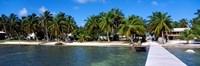 Oceanfront Pier, Caye Caulker, Belize Fine-Art Print