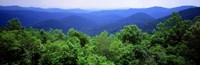 Smoky Mountain National Park, Tennessee Fine-Art Print