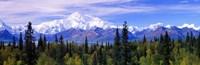 Denali National Park, Alaska Fine-Art Print