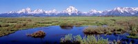 Grand Teton Park, Wyoming (color) Fine-Art Print