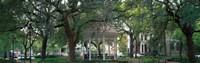 Whitefield Square Historic District, Savannah, GA Fine-Art Print