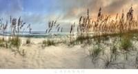 Beach Pastels Fine-Art Print