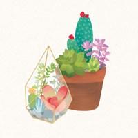Succulent Garden I Fine-Art Print