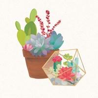 Succulent Garden II Fine-Art Print