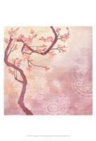 Sweet Cherry Blossoms V Fine-Art Print