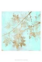 Aqua & Gold Maple II Fine-Art Print
