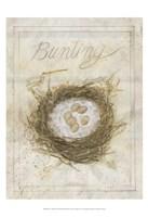 Nest - Bunting Fine-Art Print
