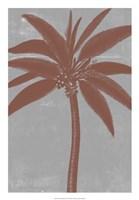 Chromatic Palms VII Fine-Art Print