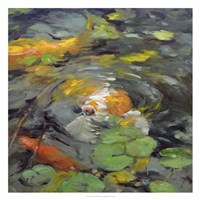 Golden Koi Fine-Art Print