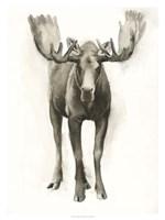 Majestic Wildlife I Fine-Art Print