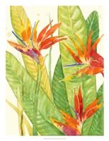 Watercolor Tropical Flowers III Fine-Art Print