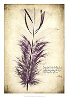Feather in Color II Fine-Art Print