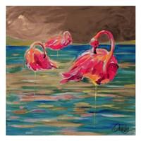Trio Flamingos Fine-Art Print