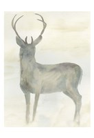 Solo Deer 2 Fine-Art Print