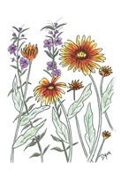 Common Blanket Flower Fine-Art Print