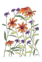 Orange Corn Flower Fine-Art Print
