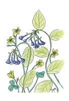 Virginia Bluebells Fine-Art Print