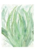 Into Green 1 Fine-Art Print