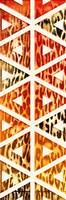 Triangular Animals Bright Mate Fine-Art Print