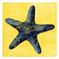 Map Starfish Y Indigo Fine-Art Print