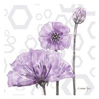 Poppy Arch 1 Fine-Art Print
