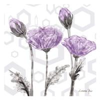 Poppy Arch 2 Fine-Art Print