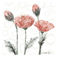 Poppy Umbrella Fine-Art Print