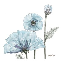 Poppy Perched 2 Fine-Art Print