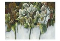 Hydrangea Twilight Fine-Art Print