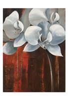 Pearl Orchid I Fine-Art Print