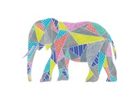Colorpoly Elly Fine-Art Print