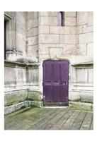 Purple Cluny 1 Fine-Art Print