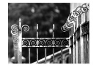 Fence 3 Fine-Art Print