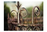 Fence Mint Fine-Art Print