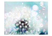 Teal Dandelion Fine-Art Print