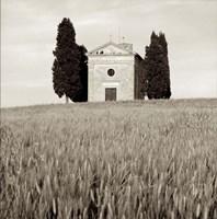 Tuscany IX Fine-Art Print