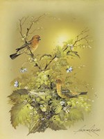 Bird Fine-Art Print
