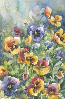 Picture Perfect Pansies Fine-Art Print