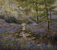 Bluebell Bridge Fine-Art Print