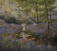 Bluebell Bridge Fine-Art Print