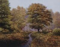 Forest Herd Fine-Art Print